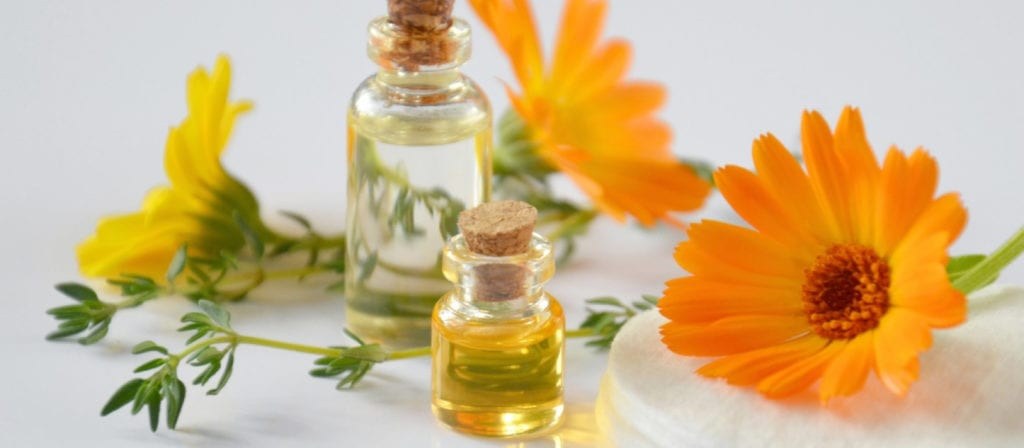Calendula Essential Oils for Poison Ivy
